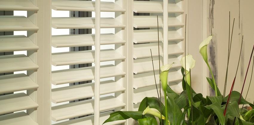 Window Shutters Alternatives